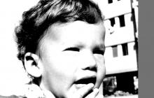 Amir 1973