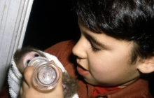 Dotan Feeding the Baby Monkey