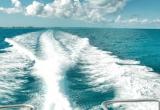 Sea waves and skies