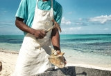 Preparing the Conch