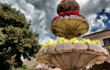 A Fountain of Flowers