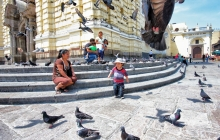A baby chasing pigeons