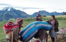 Women uplading a donkey