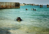 113 A diver in water_DSC7056