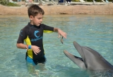 48 Asher feeding dolphin AtlantisPhoto_36