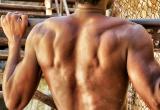 48 Back muscle anatomy_DSC5911