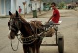 87 A riding boy in Vinalis_DSC6732