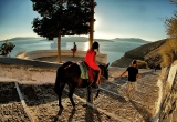 72 Down the donkey trail_DSC9050