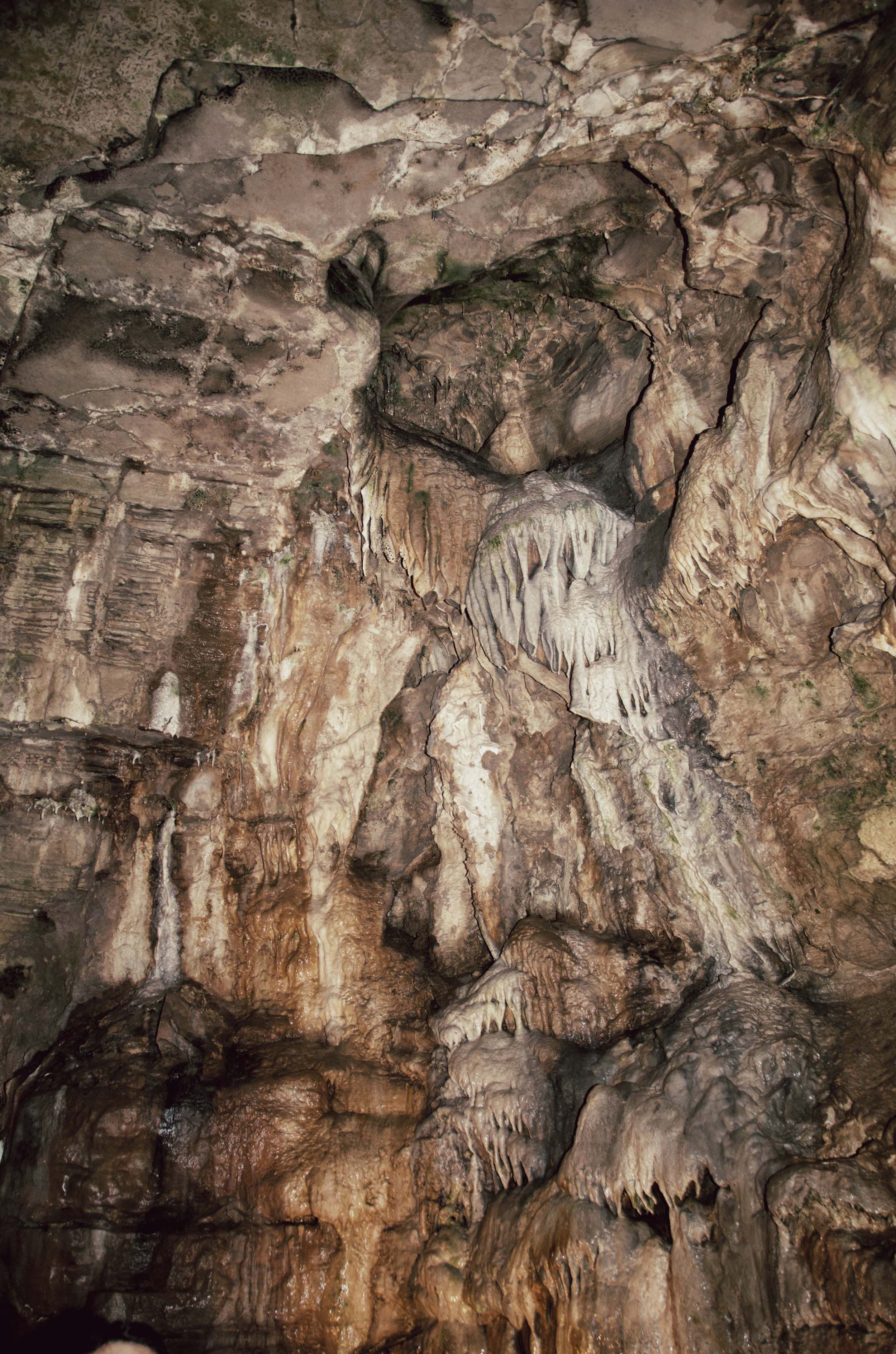 Izzy S Website Howe Caves